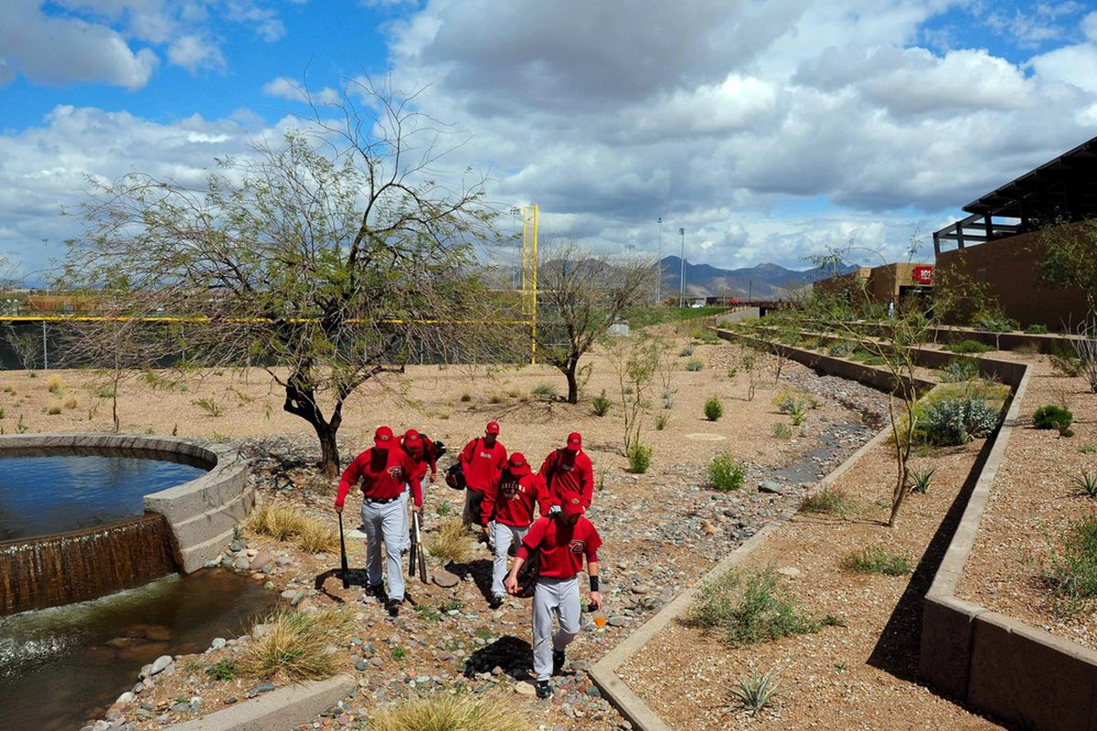 Members of the Arizona Diamondbacks walk through a wash outside Salt River Fields at Talking Stick prior to a spring training game between the Los Angeles Angels and Colorado Rockies.
