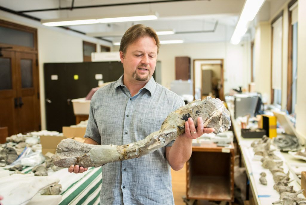 Peter Makovicky, The Field Museum's chief dinosaur scientist, holds a thigh bone from a Cryolophosaurus found in Antarctica.