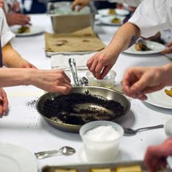 Plating Wylie Dufresne's cave man dish.