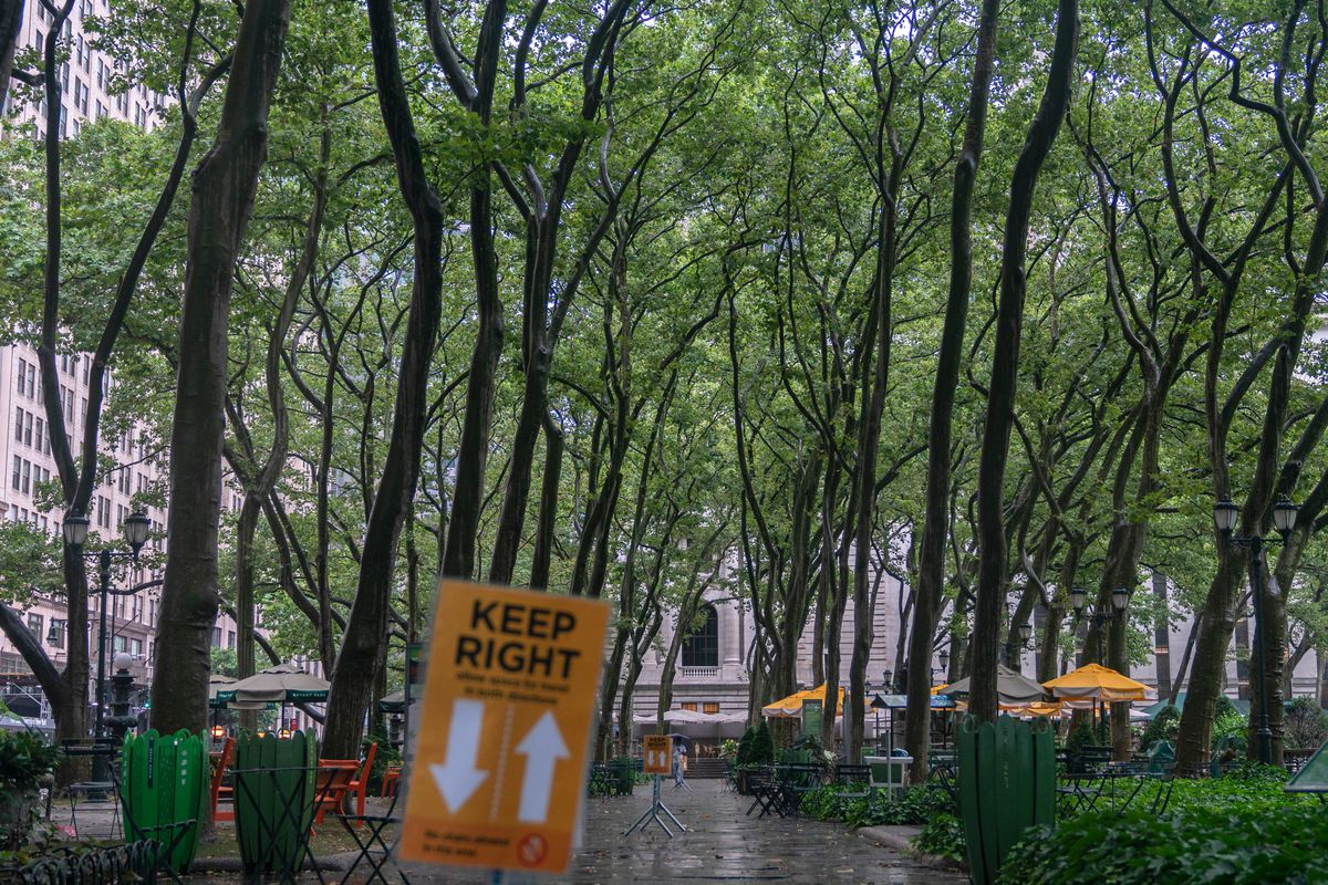 Rows of London Plane trees cover a walkway in Bryant Park, July 10, 2020.