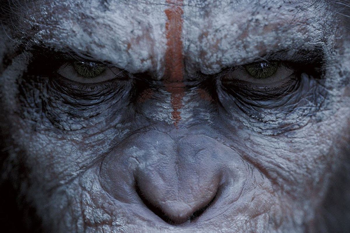 Dawn of the Planet of the Apes...