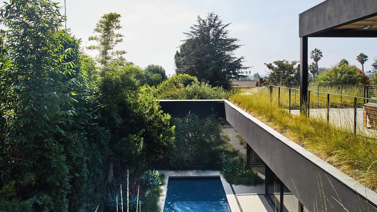 View of the pool below, surrounded by trees and greenery, from the deck on the second floor of a home in LA.