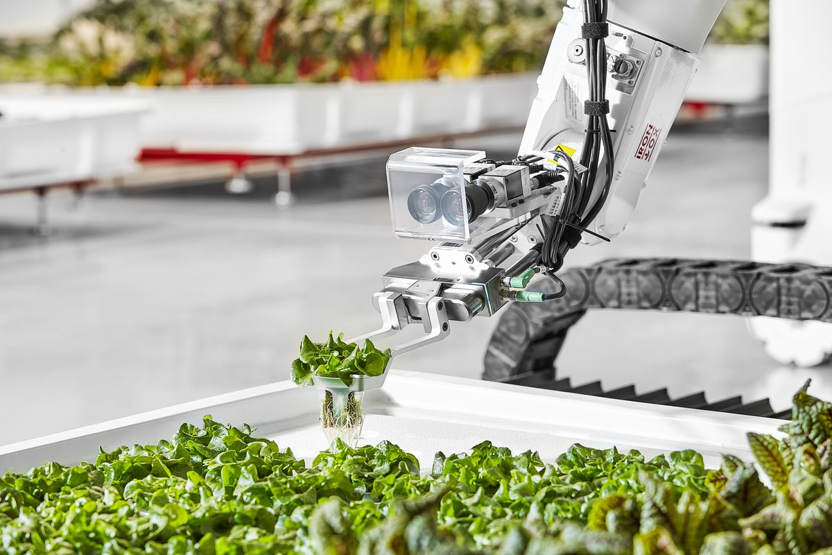 Image result for robot growing food
