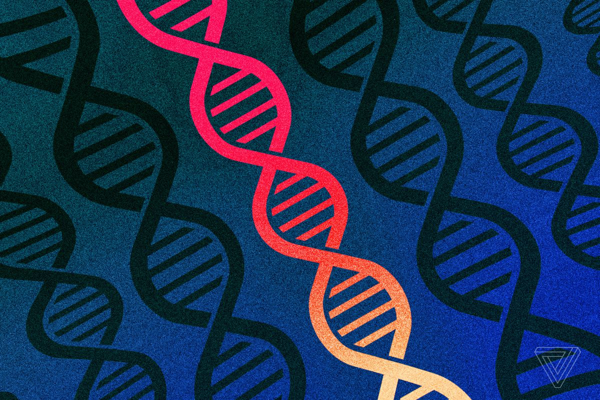 Two-thirds of Americans approve of editing human DNA to