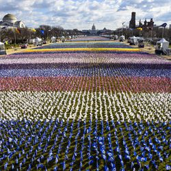 """Flags decorate the """"Field of Flags"""" at the National Mall near the U.S. Capitol ahead of the inauguration of U.S. President-elect Joe Biden on January 20, 2021 in Washington, DC. During today's inauguration ceremony Joe Biden becomes the 46th president of the United States."""