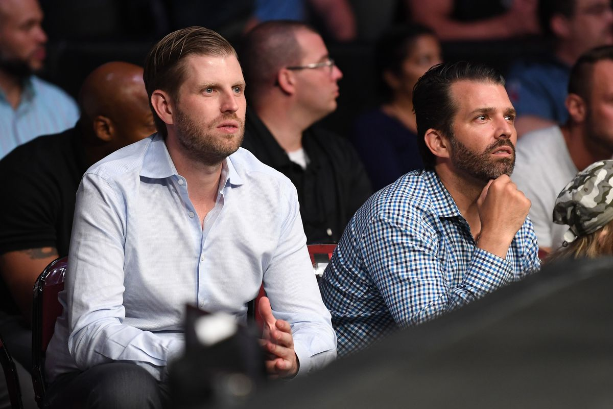 Donald Trump Jr. and Eric Trump sitting in the audience at a UFC event.