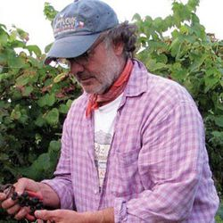 Lewis Dickson of Texas Hill Country's La Crux du Comal. He, along with his partner and winemaker, Tony Coturri (of California's Coturri) are proving that there's terroir in them thar hills.