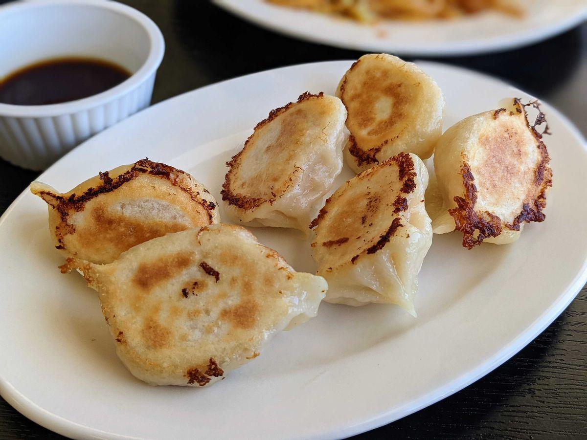 An oval plate of dumplings lightly crisped from pan frying.