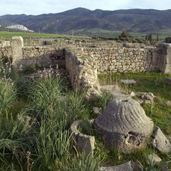 In this Thursday, March 8, 2012 photo, a stone used to grind olives to produce olive oil peeks through the undergrowth in Volubilis, Morocco's most famous Roman ruin near Meknes, Morocco.