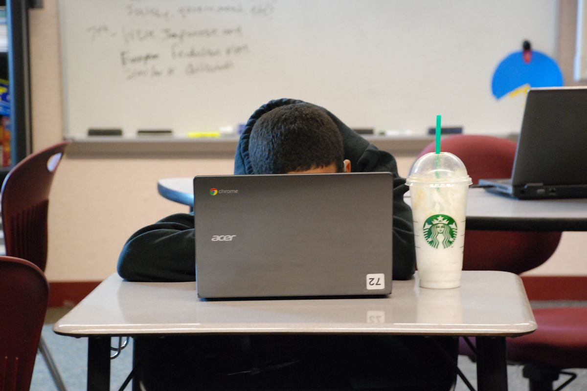 PARCC tests, which most students took online, are supposed to measure critical thinking and problem solving.