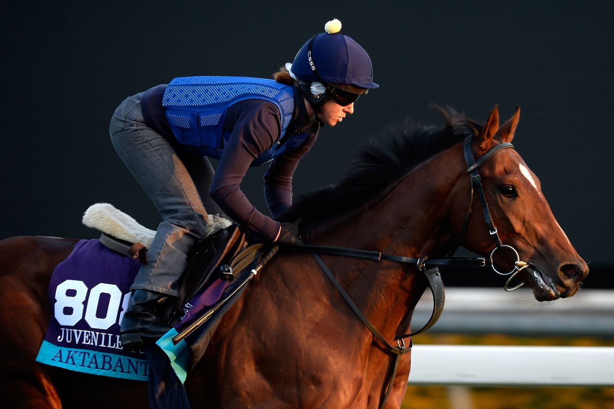 Breeders Cup Betting Long Shots And Morning Line Odds