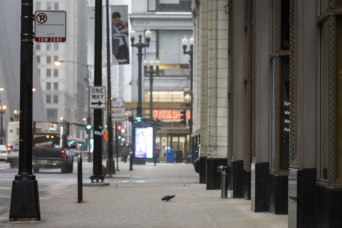 A pigeon has the sidewalk to itself on Madison near State Street in the Loop during a foggy morning commute last month.