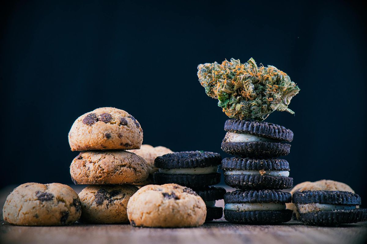 3 piles of choc-chip cookies and oreos with a nugget of marijuana on top of one.