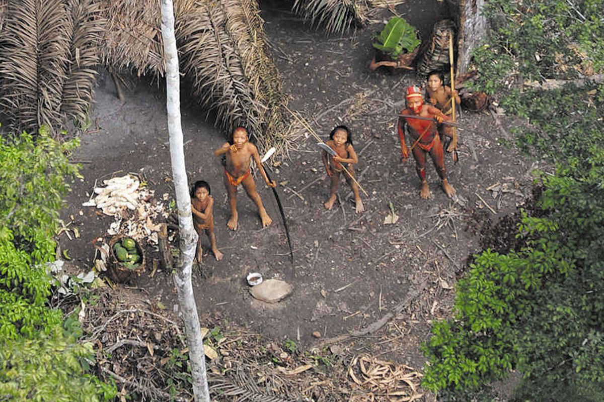 An isolated tribe, photographed from an airplane in 2008, may be the one that contacted Brazilian officials last week.