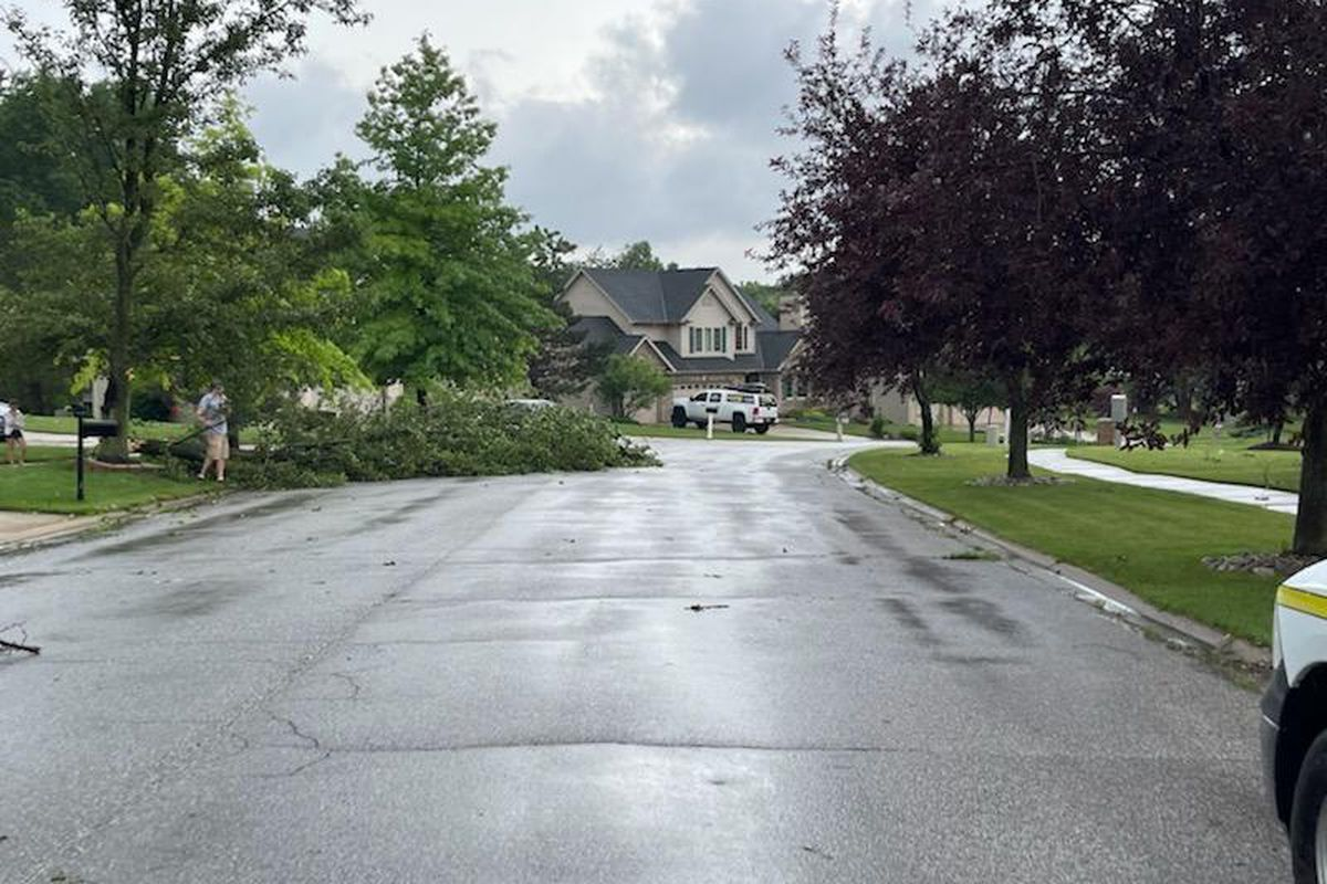 Trees were knocked over in Dyer, Indiana, as a 75 mph tornado passed through the town Saturday.