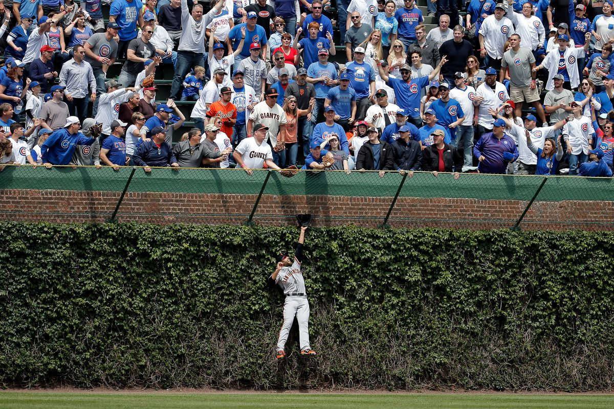CHICAGO, IL - MAY 25: Mac Williamson #51 of the San Francisco Giants leaps in to the ivy to in an attempt to make a catch as fans reach for the home run ball of Kris Bryant #17 of the Chicago Cubs (not pictured) during the first inning at Wrigley Field on May 25, 2017 in Chicago, Illinois.  (Photo by Jon Durr/Getty Images)