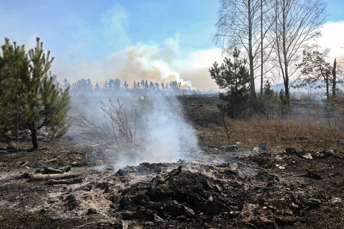 Forest fire in Chornobyl exclusion zone