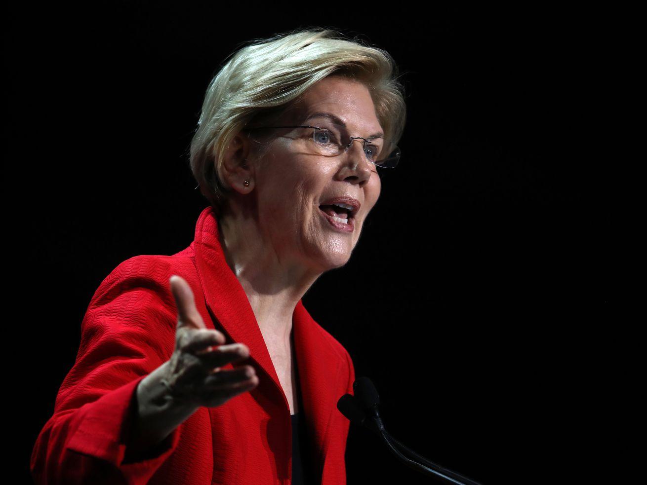 Democratic presidential hopeful Sen. Elizabeth Warren (D-MA) speaks during the California Democrats 2019 State Convention.