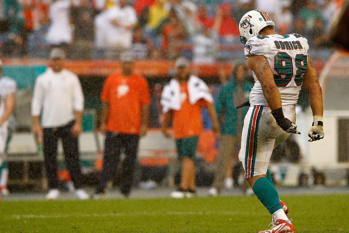 MIAMI GARDENS, FL - NOVEMBER 20:  Jared Odrick #98 of the Miami Dolphins celebrates a sack during a game against the Buffalo Bills at Sun Life Stadium on November 20, 2011 in Miami Gardens, Florida.  (Photo by Mike Ehrmann/Getty Images)