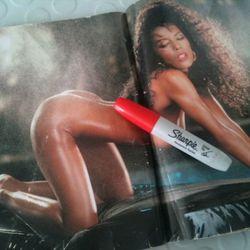 Renee Tenison, Playboy Allstar