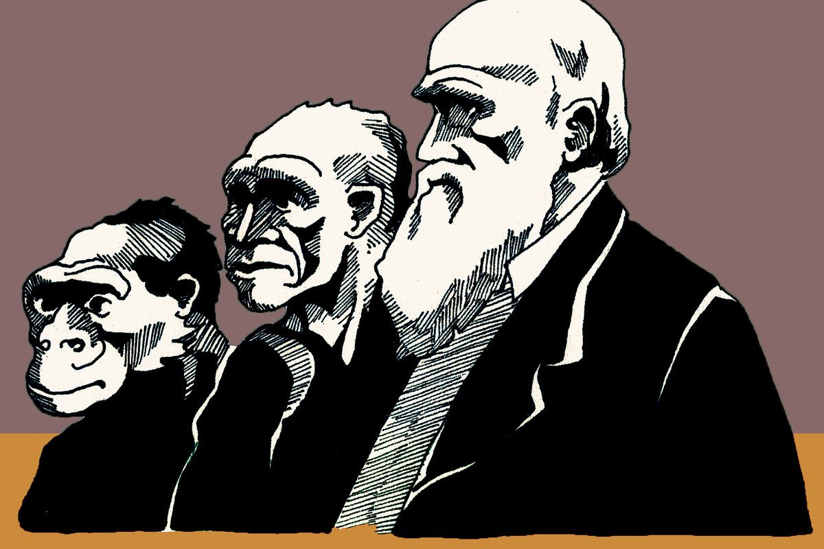 Junie Bro-Jorgensen color illustration of Charles Darwin.