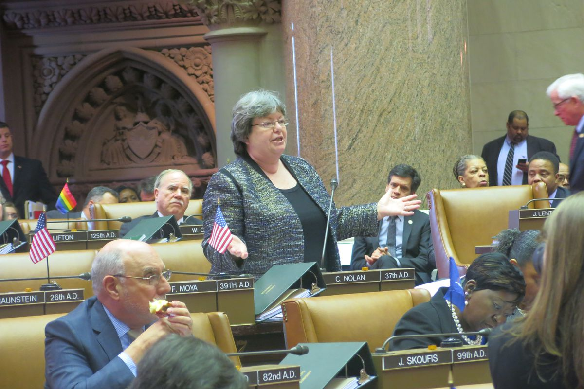 Catherine Nolan, chair of the Assembly education committee.