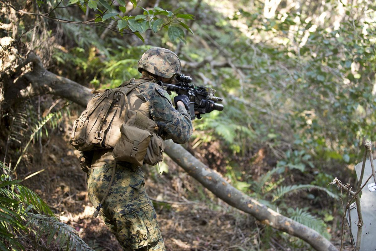 Camouflage stock USMC Lance Cpl. Andrew Kuppers 2040