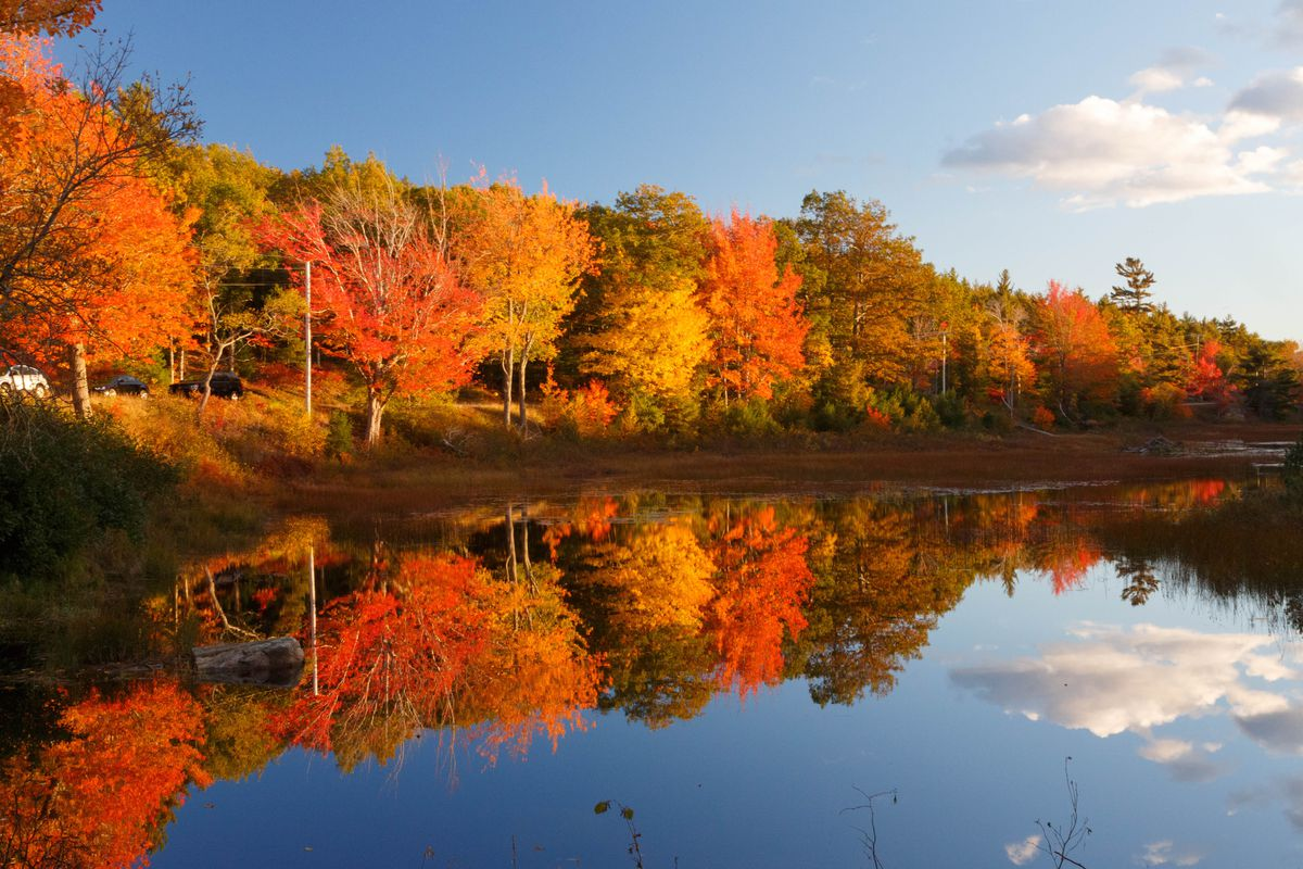 In the foreground is a body of water. Adjacent to the body of water are trees with colorful leaves in autumn.