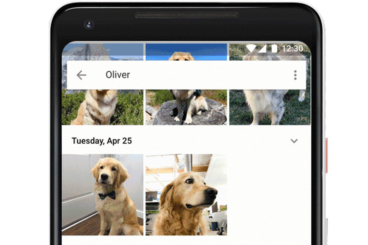 Google Photos can now recognize your pets