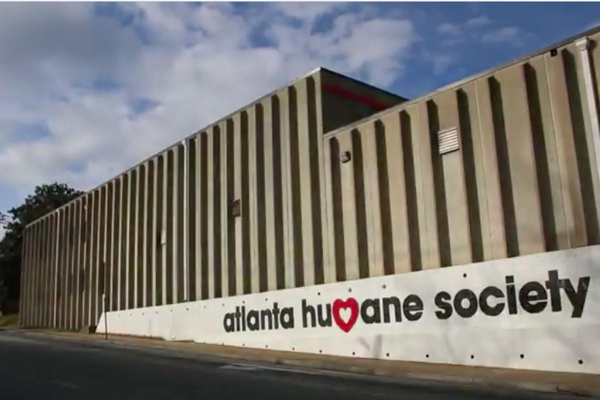 Atlanta Humane Society Okay Developers We Ll Sell Our Prime Property Curbed Atlanta