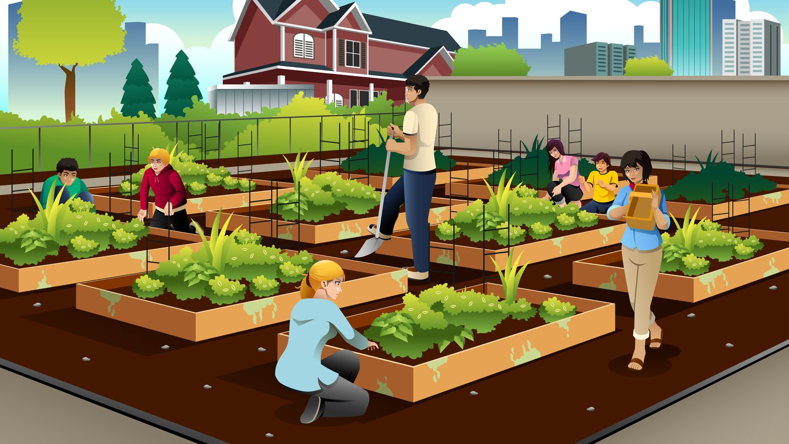 the real value of urban farming hint it 39 s not always the food vox. Black Bedroom Furniture Sets. Home Design Ideas