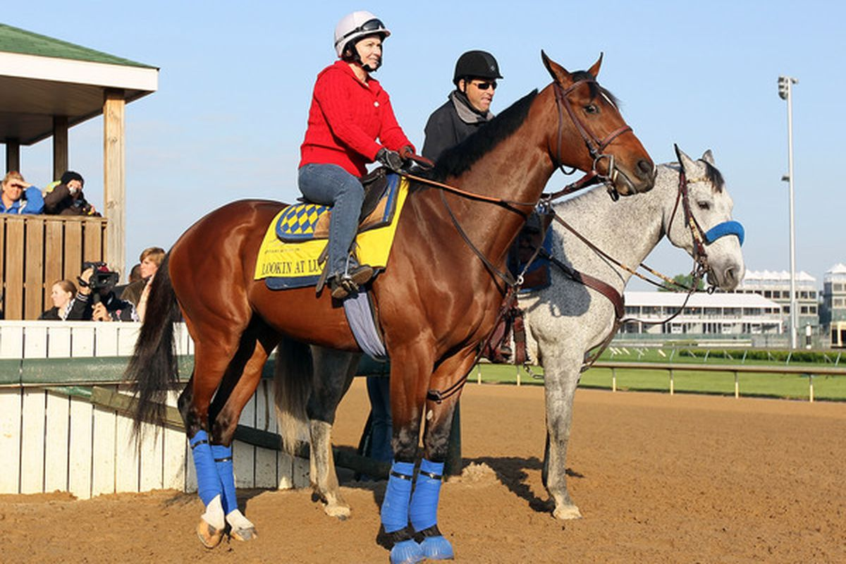 LOUISVILLE, KY - APRIL 28:  Lookin at Lucky with Dana Barnes aboard waits to go on the track during the morning workouts for the Kentucky Derby at Churchill Downs on April 28, 2010 in Louisville, Kentucky.  (Photo by Andy Lyons/Getty Images)