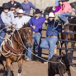 A UHSRA participant ropes a calf during the Utah High School Rodeo Finals in Heber City on Saturday, June 3, 2017.