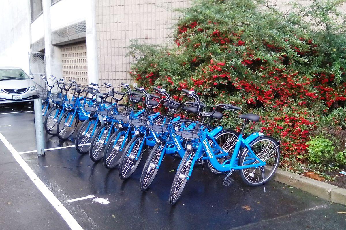 Ten blue bikes in a San Francisco parking lot.