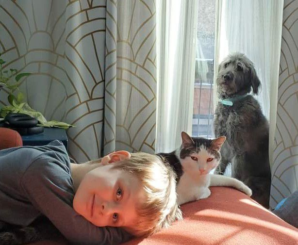 A photo of Anne Cooper's son, Arthur, alongside his learning mates Merlin the cat and Watson the dog.