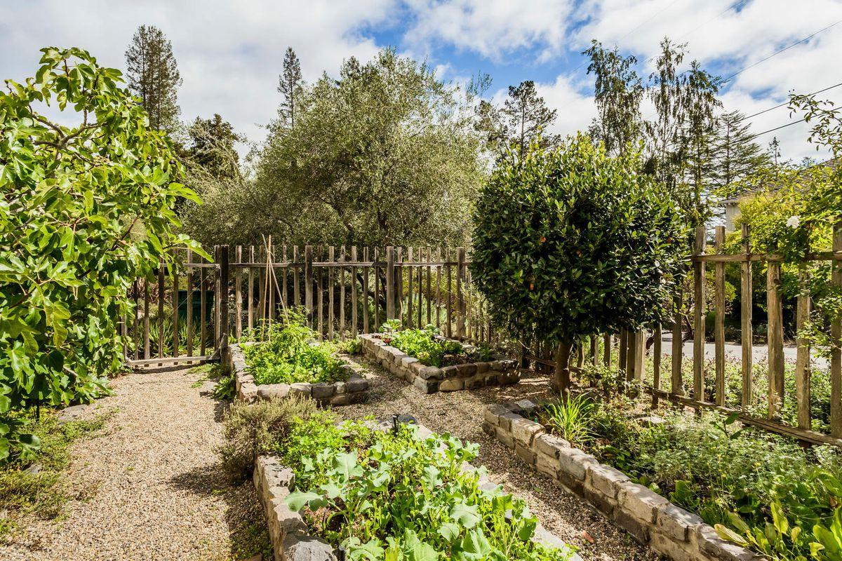 Famous Olive Garden Spring Hill Tn Crest - Brown Nature Garden ...