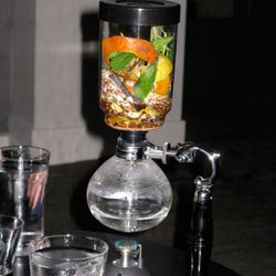 The Rooibos: a science project at your table