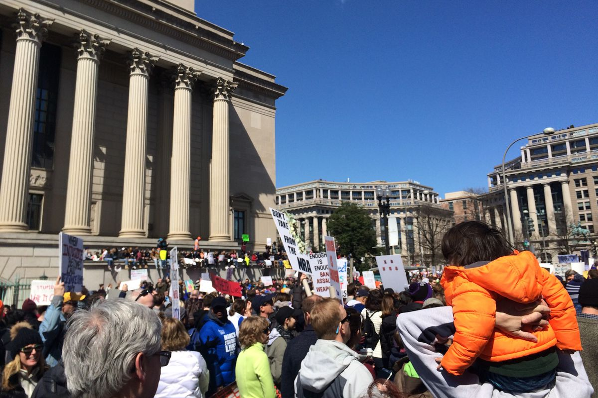 The March for Our Lives in Washington, DC