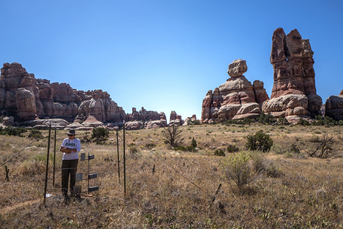 A secret area inside Canyonlands National Park, south of Moab, is pictured on Thursday, Sept. 19, 2019. Using different kinds of traps, scientists monitor dust in the air, a growing worldwide problem. One set of traps is designed to catch dust that enters the area from distant sources, some as far away as China.