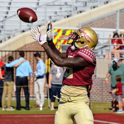 FR WR Tamorrion Terry hauls in a catch during warm-ups.