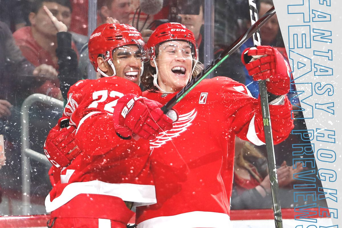 newest collection 19df8 a8a42 Fantasy Hockey 2019-20 Team Previews: Detroit Red Wings ...