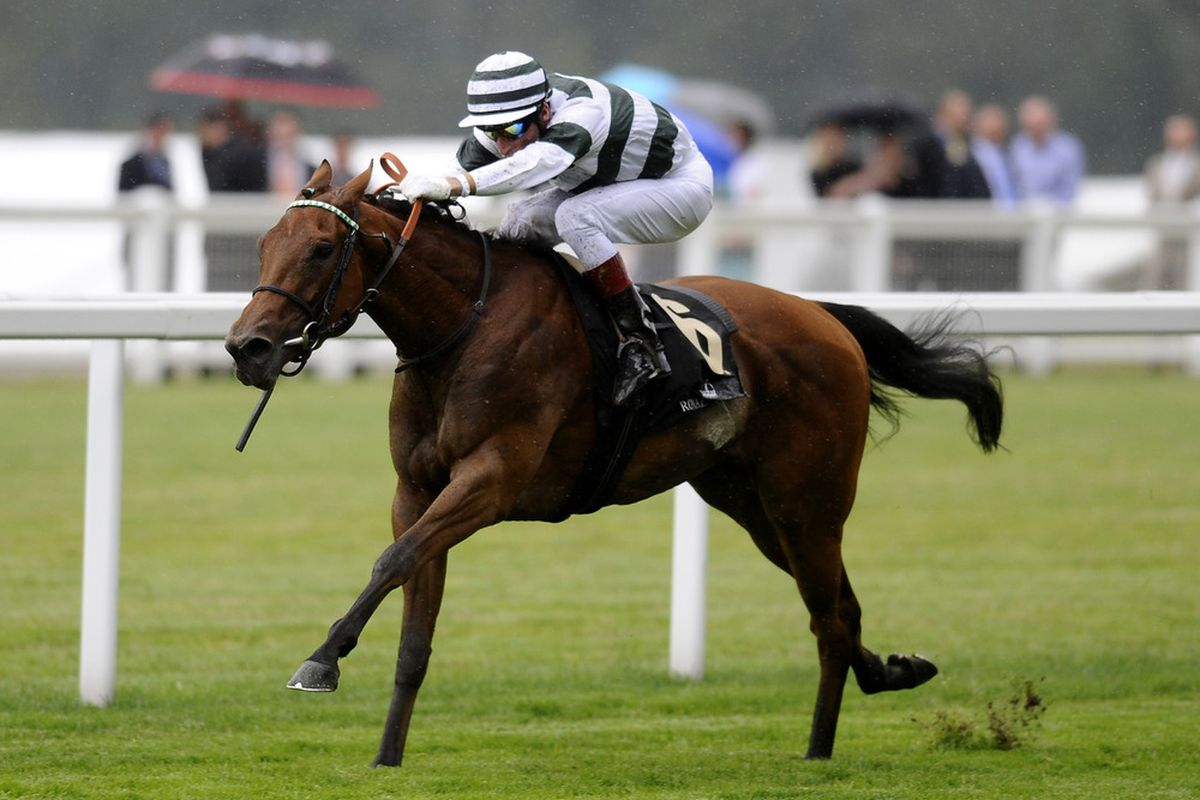 ASCOT, ENGLAND - JUNE 17:  Immortal Verse (IRE) wins the Group 1 Coronation Stakes during day four of Royal Ascot at Ascot racecourse on June 17, 2011 in Ascot, England  (Photo by Alan Crowhurst/ Getty Images)
