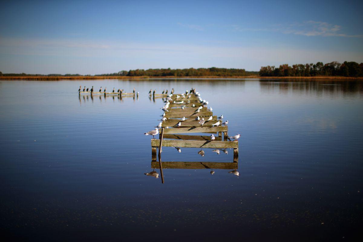 Rising Sea Levels Threatens Coast Of Maryland's Hoopers Island
