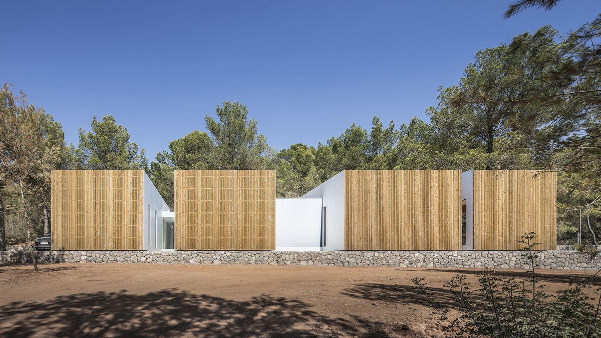 Four volumes clad in timber slats.