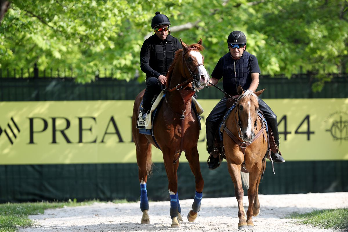 The Preakness Stakes: Odds, Pole Positions and Picks - Fake