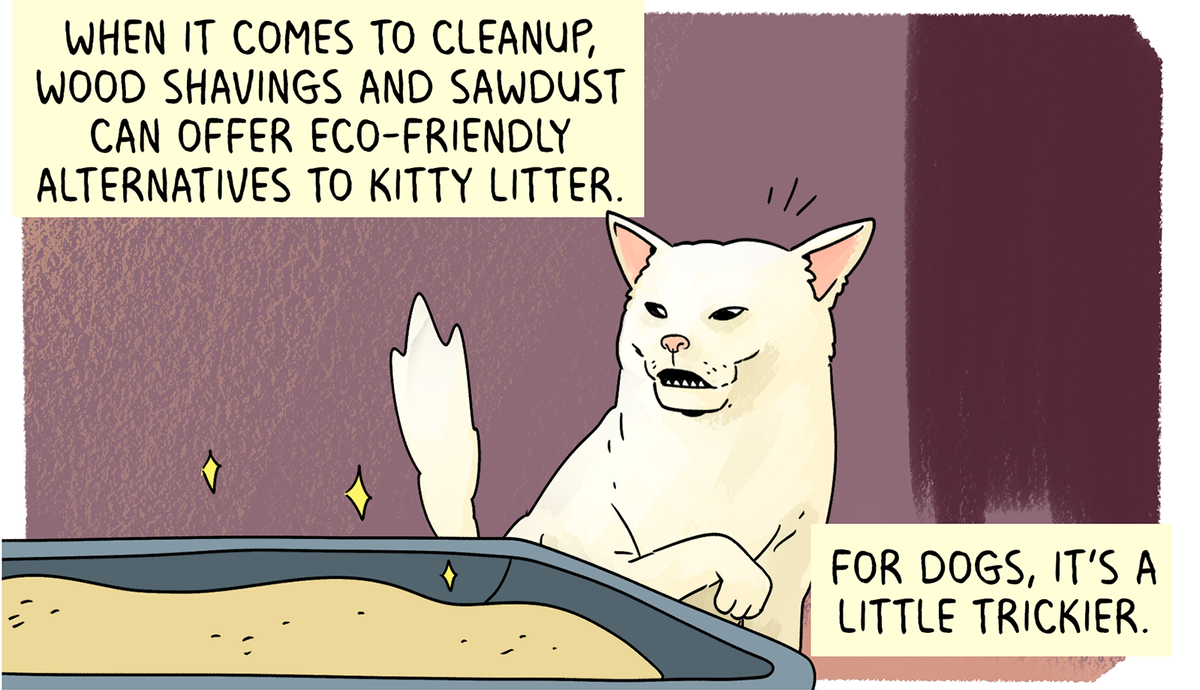 When it comes to cleanup, wood shavings and sawdust can offer eco-friendly alternatives to kitty litter. For dogs, it's a little trickier.