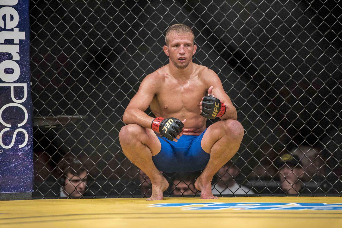 MMA: UFC 200-Dillashaw vs Assuncao
