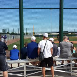 Fans watching the minor-league game -