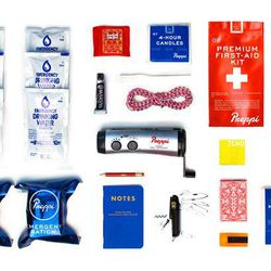 """Preppi Survival The Prepster Lite 72-hour kit for one, <a href=""""http://secure.preppi.co/products/the-prepster-lite"""">$145</a>"""