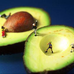Avocado, Willy Rojas